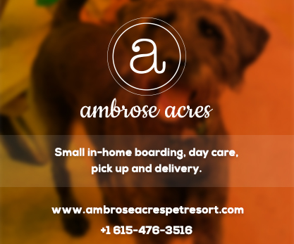 Ambrose Acres Pet Resort